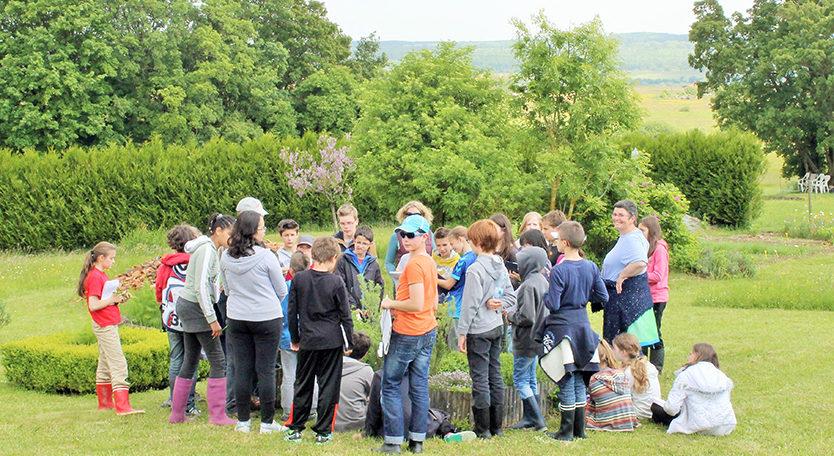 Groupe scolaire au Jardin Expérimental du Gurtelbach, au CIP La Villa, musée d'archéologie de Dehlingen