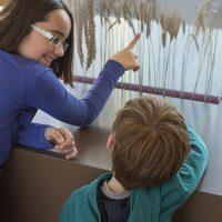 Deux enfants dans l'exposition du CIP La Villa, musée d'archéologie à Dehlingen, la jeune fille présente le blé, céréale cultivée à l'époque Gallo-Romaine