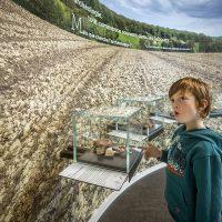 Vue d'un enfant dans l'exposition du CIP La Villa, musée d'archéologie à Dehlingen, devant un panneau présentant le début du travail archéologique dans la région : les premières pièces retrouvées durant le labours